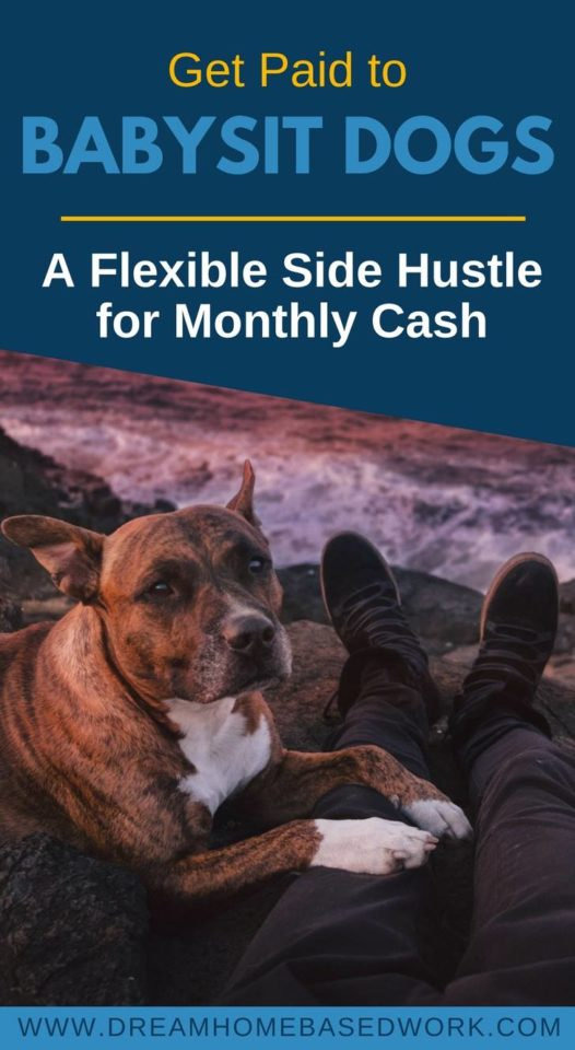 Have a love for animals? Consider dog sitting jobs as a profitable side hustle and earn money doing what you love. Here's how to get started!